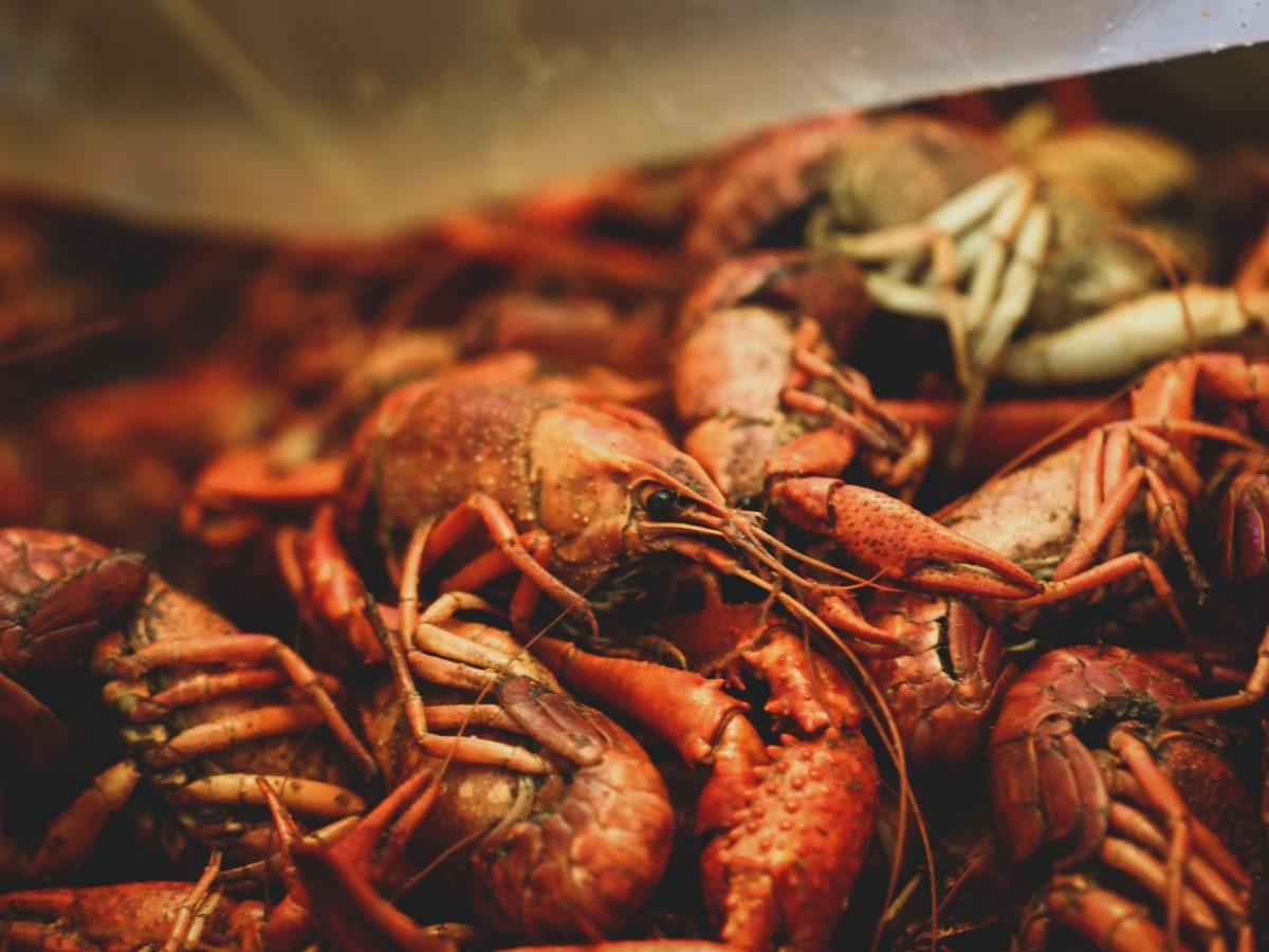 Louisiana Cajun Seafood Boil Recipe